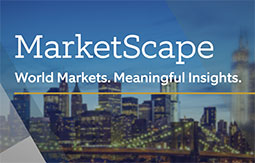 Image for Marketscape